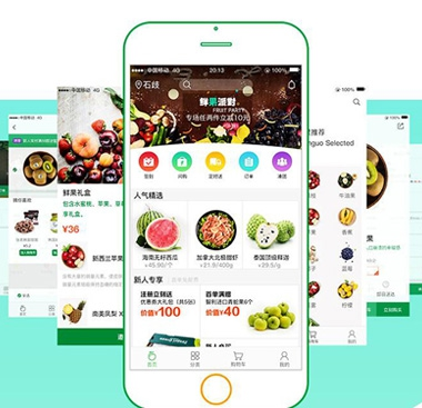 烟台网站开发的专家浅谈生鲜电商app开发的模式