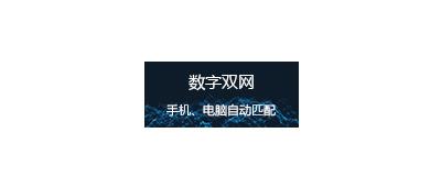 数字双网网站建设